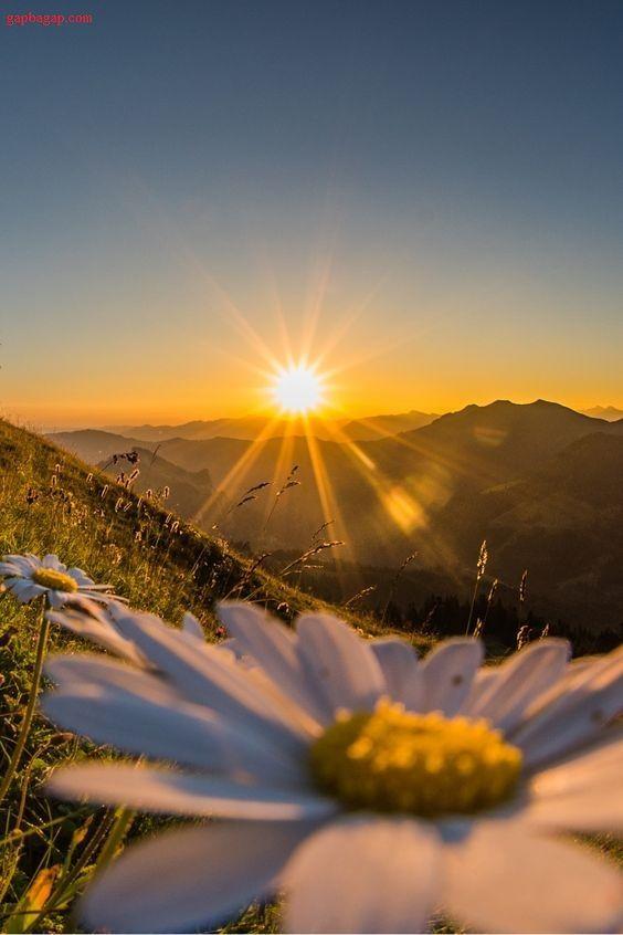dc4563bb21db0900d59e13b01661044f--sunrise-and-sunset-beautiful-sunset