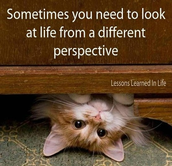 new-perspective-quote-1-picture-quote-1