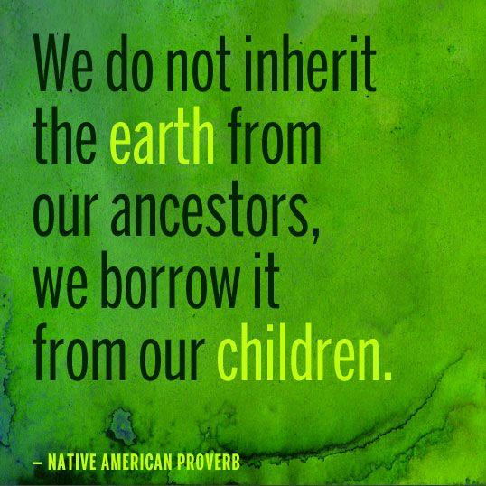 0bdcfc8bf52f5e7243444cc5e3ec89a6--native-american-proverb-native-american-wisdom