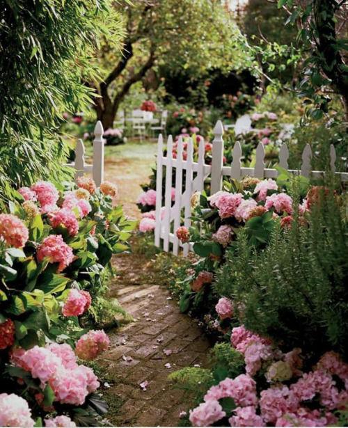 161791-Pink-Garden