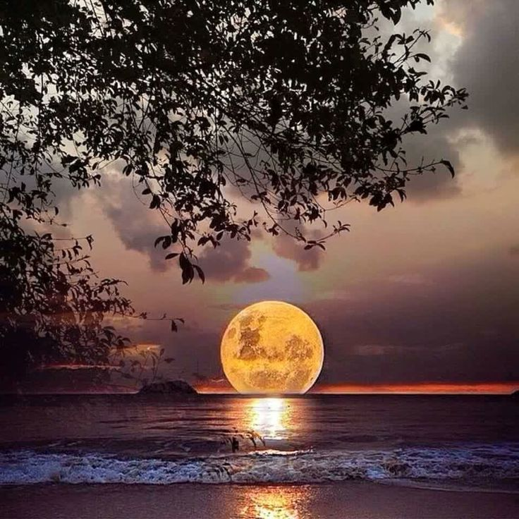 4b09df7b4a5829033581a66239843cc7--beautiful-moon-beautiful-places