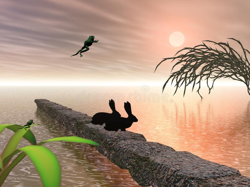 colors-wild-wilderness-two-hares-frog-jumping-64598763