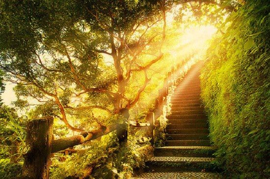 sunlight-on-a-path-creative-commons