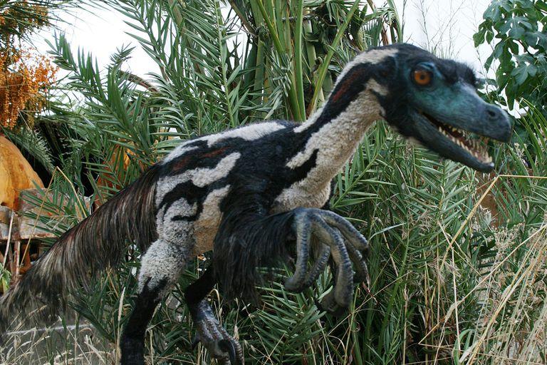 velociraptor-58d295fd3df78c3c4f5c995b