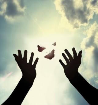 butterfly_release-e1433512047811