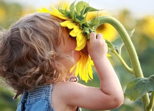 childSunflower-e1325036329272