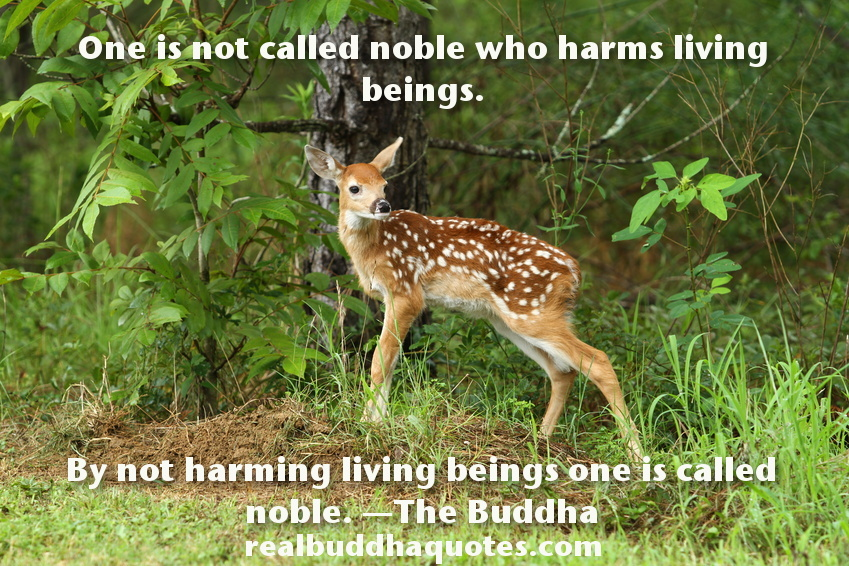 One-is-not-called-noble-who-harms-living-beings1