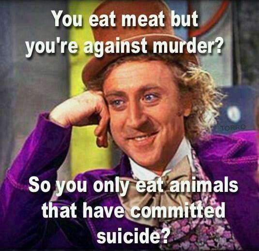 928fe241c4ab79c6915d926053d16703--funny-vegan-quotes-vegan-funny