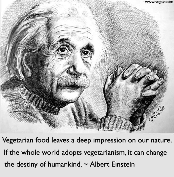 09b481b6406cb2474897abb575f65363--albert-einstein-quotes-vegan-lifestyle