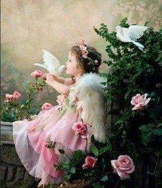 2e12b04a31fc3af91d7849af3eda508c--white-doves-angels-among-us