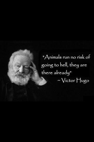 aa963b0af445d6091758e1fc1ca2cb5f--victor-hugo-quotes-vegan-quotes