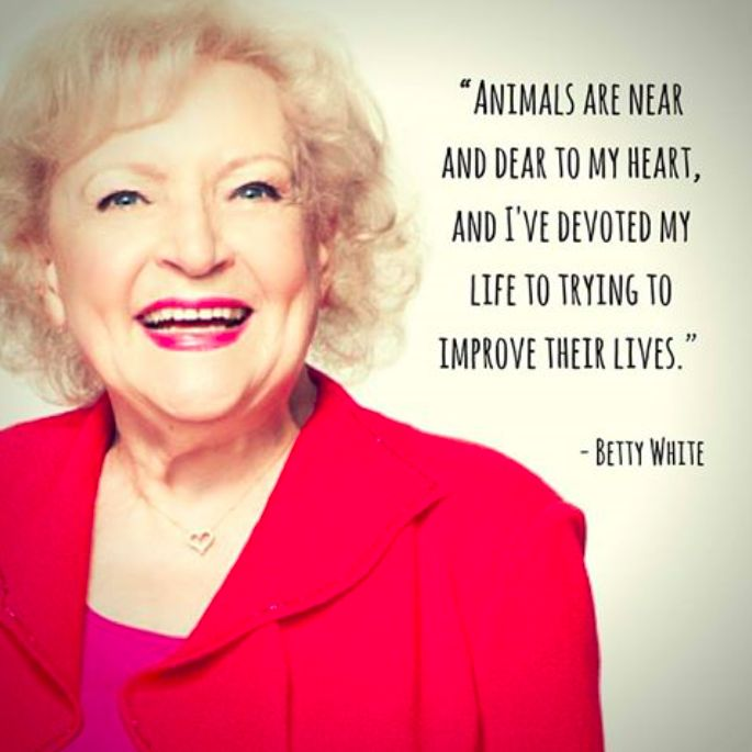 da4b5fb0c6006f92736f1945c33a40ce--betty-white-vegan-quotes