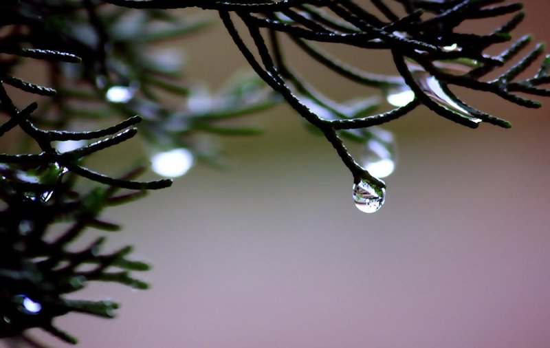 little_rain_water_by_vebi
