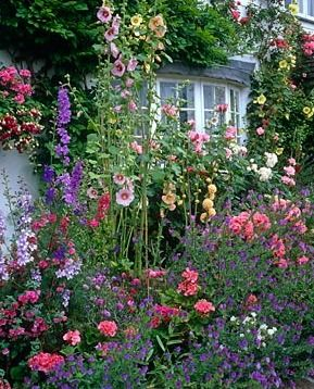 9da3c57a066ddfd7bb896b39d64e30ab--english-cottage-gardens-english-cottages