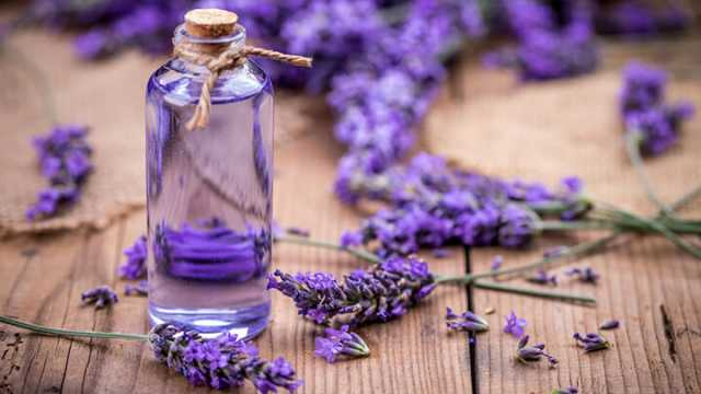 Essential-Oils-For-Feet-Lavender-640x360