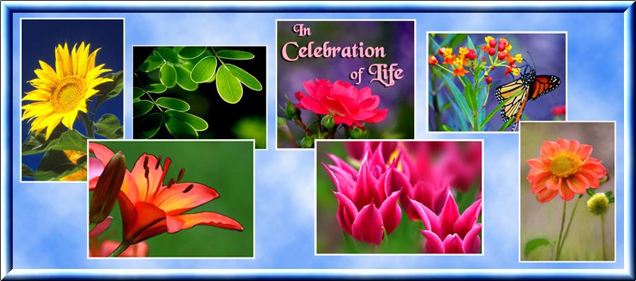 in-celebration-of-life-for-blog