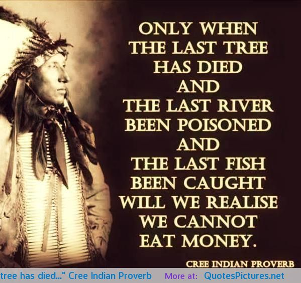 only-when-the-last-tree-has-died-cree-indian-proverb