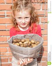 small-girl-holding-sack-potatoes-crop-freshly-harvested-domestic-garden-34483629