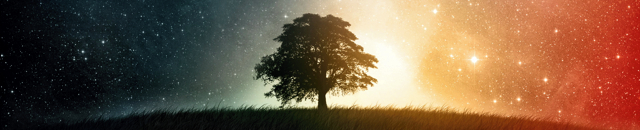 consider_a_tree