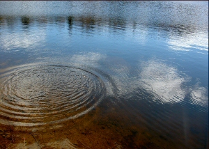 pebbles_ripples_pond