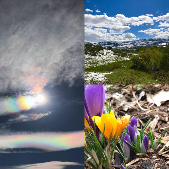 spring-equinox-journey-collage