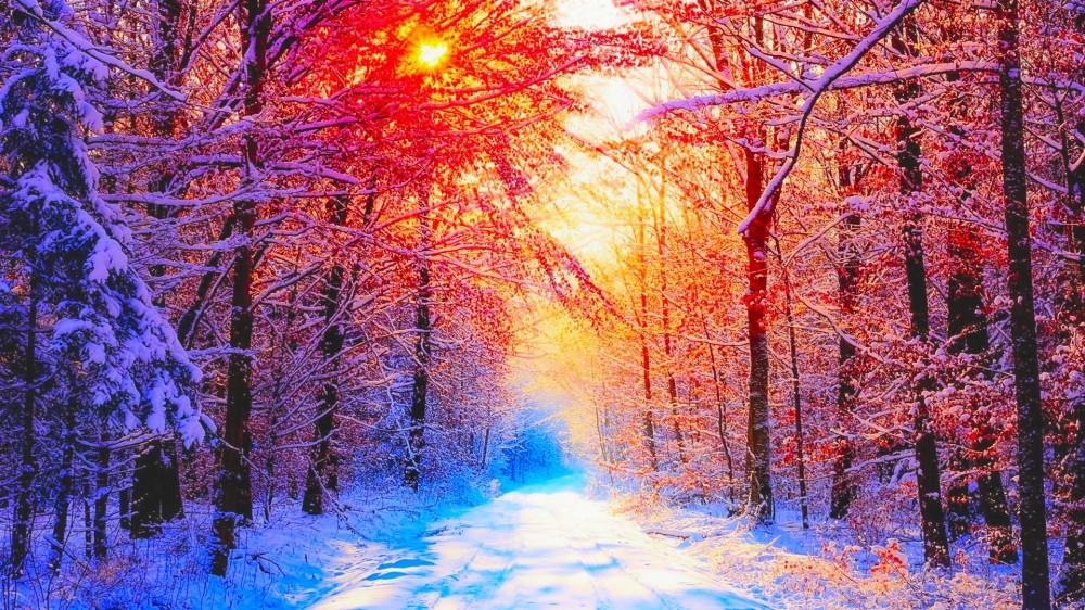 winter-wallpapers-picture-For-desktop-Wallpaper