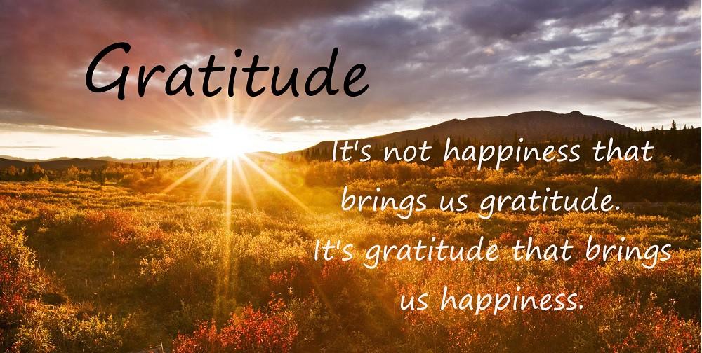Image result for images gratitude