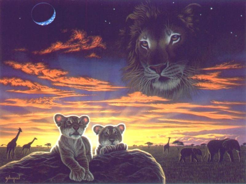 lion_cub8x6