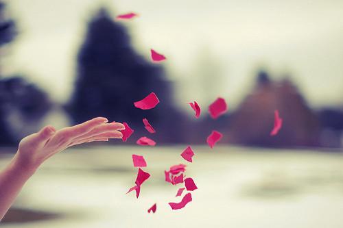 releasing-flower-petals