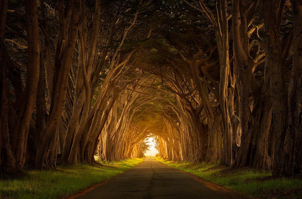 970x641-light-tunnel