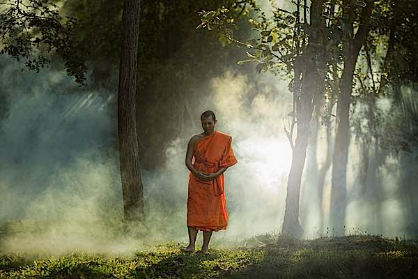 Buddha-Weekly-Walking-Meditation-Buddhist-Monk-in-Forest-Buddhism