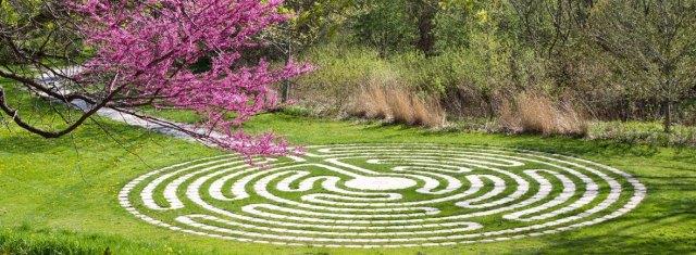 LabyrinthSpring