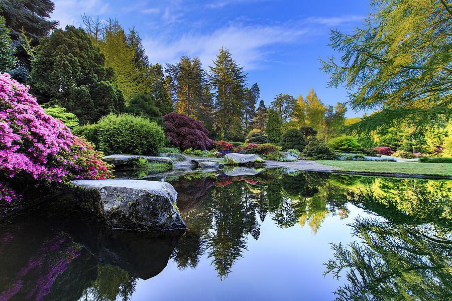 kubota-japanese-garden-reflection-guy-laclair