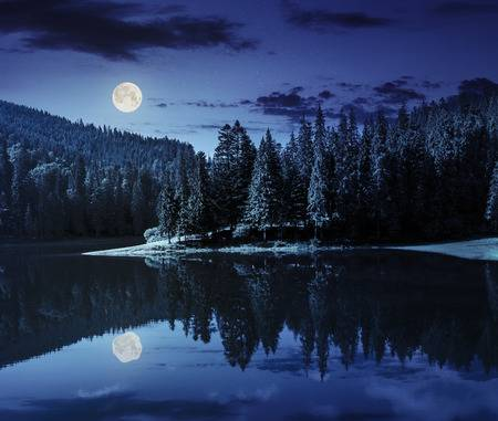 40899334-lake-near-the-pine-forest-in-mountains-at-night-in-full-moon-light