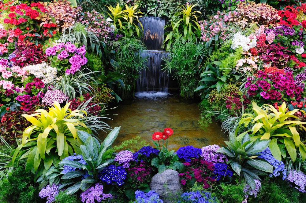 88373-waterfall-pool-surrounded-with-many-colourful-flowers