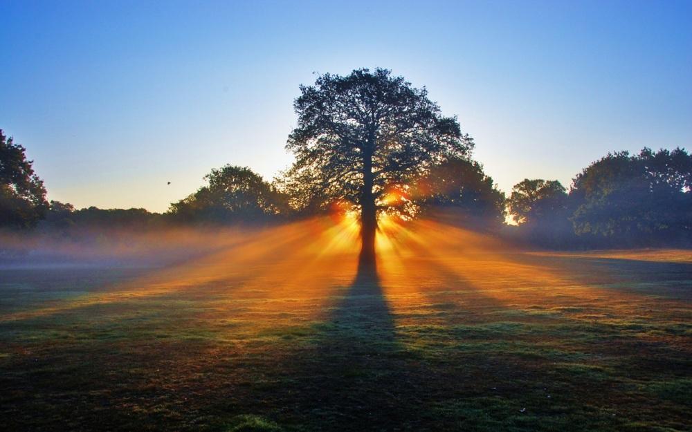 beautiful-morning-sun-4